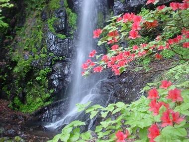 DSC01733野地の大滝.JPG