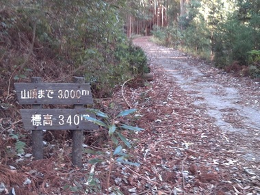 IMG_0379釈迦岳.JPG